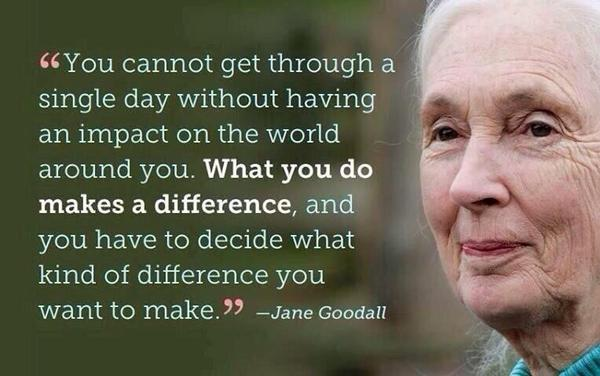 """What you do makes a difference."" #JaneGoodall #StepUp 4 #Research 4 #Cures 4 #ChildhoodCancer Kids are our future. http://t.co/oO2UmbMY8Y"