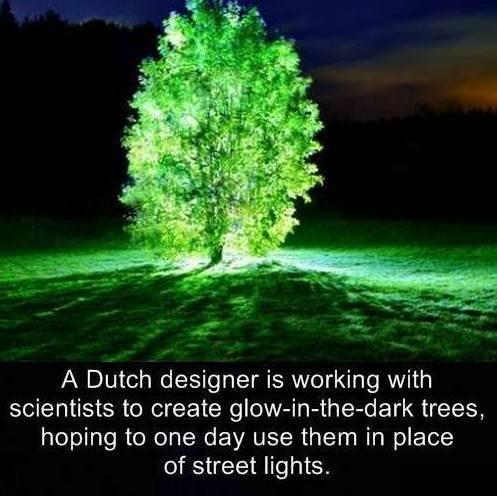 What an idea: http://t.co/Vs78M2aCDn