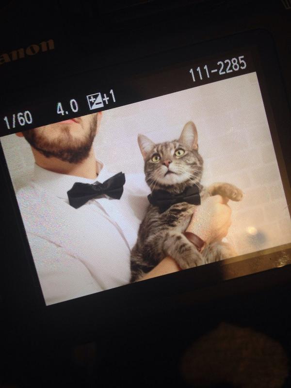 Do I win the award for best photo ever..?! http://t.co/pHRFXkehbX