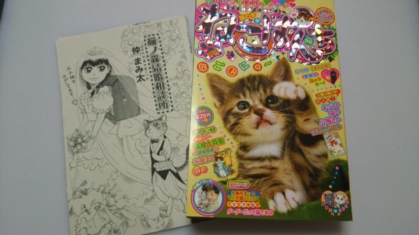昨日発売のねこぱんち本誌に、猫の森結婚相談所24ページ載せて頂いてますー!宜しくお願いします!! http://t.co/E4LEWIpnlZ