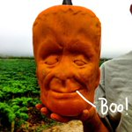 Behold the world's first Frankenstein Pumpkin! Oh my gourd, this is AH-mazing for Halloween! http://t.co/RoKQlXjOnB http://t.co/Qv9gcGEXBR