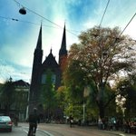 Autumn leaves and blue skies. I've missed you #Amsterdam. #ADE14 #ADEdiary