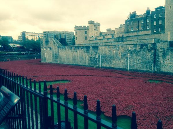 Very moving sight the sacrifice overwhelming each a memory Tower of London poppies http://t.co/dqAumZuR9Z