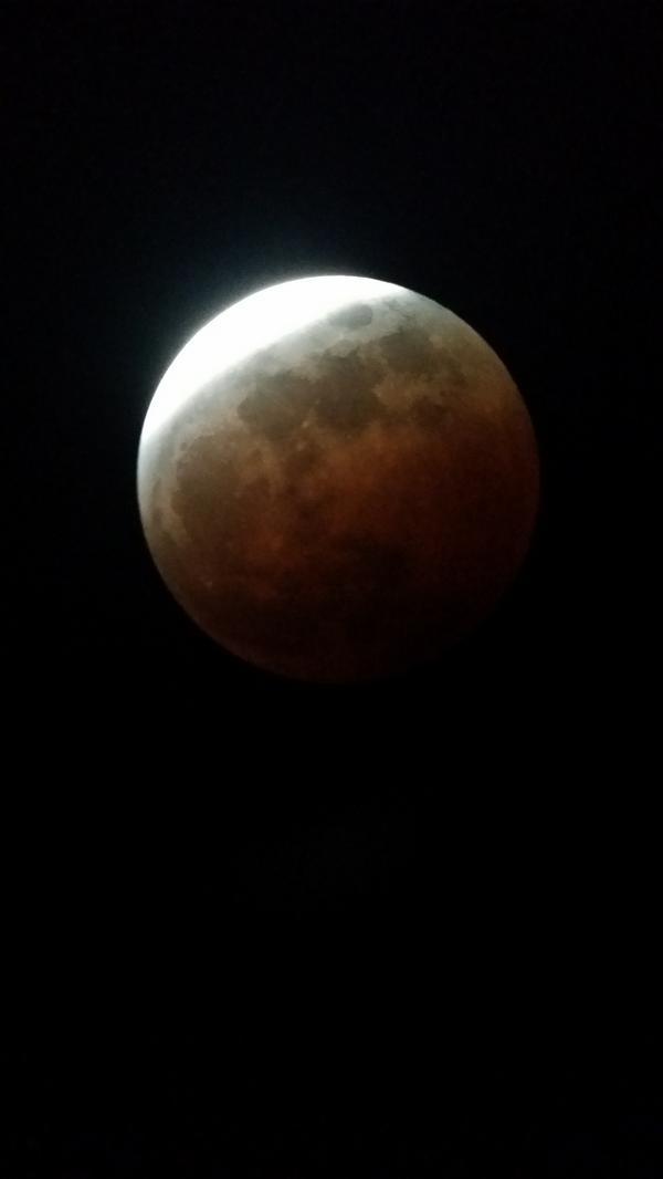 Almost to totality! #LunarEclipse #BayArea #SanJose http://t.co/NiqvKloJ6i