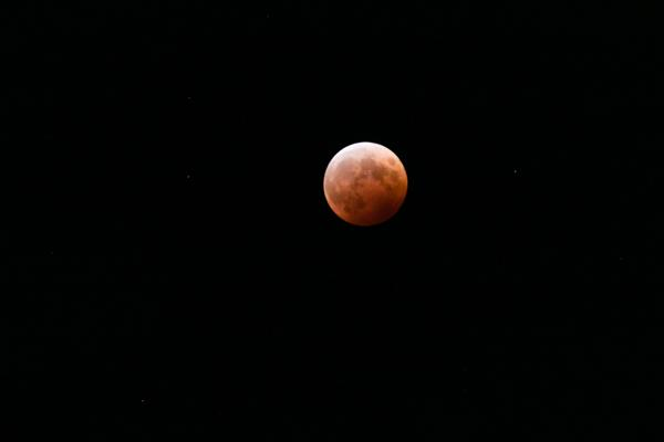 撮れたよー! 撮れたてだよー!  #皆既月食 http://t.co/ZvThtdk0zn