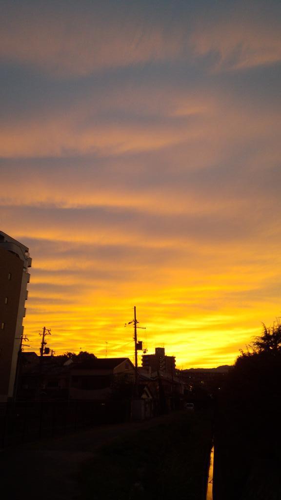 現在の京都の夕焼け。午後になって雲が増えて半分諦めていたのだが、綺麗に現れた。 http://t.co/vth2q6jKbt