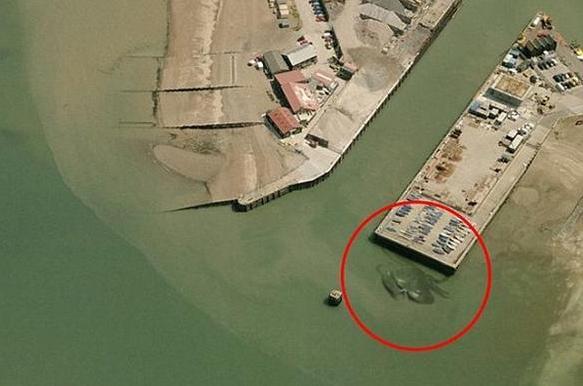 脳O)はうわww @livedoornews: 100RT:【これはw】英国の埠頭に巨大なカニが現われる! http://t.co/HVUQIyezhy  航空写真家が撮影したショット http://t.co/Gkpvcjpywr