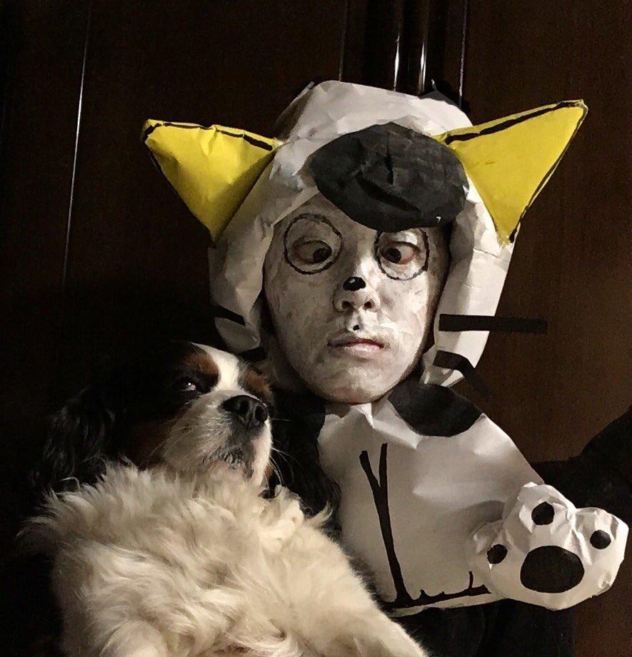 犬とうちのタマ知りませんか?あわせ