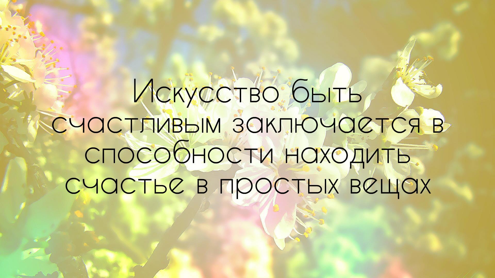 Жизненные цитаты про счастье