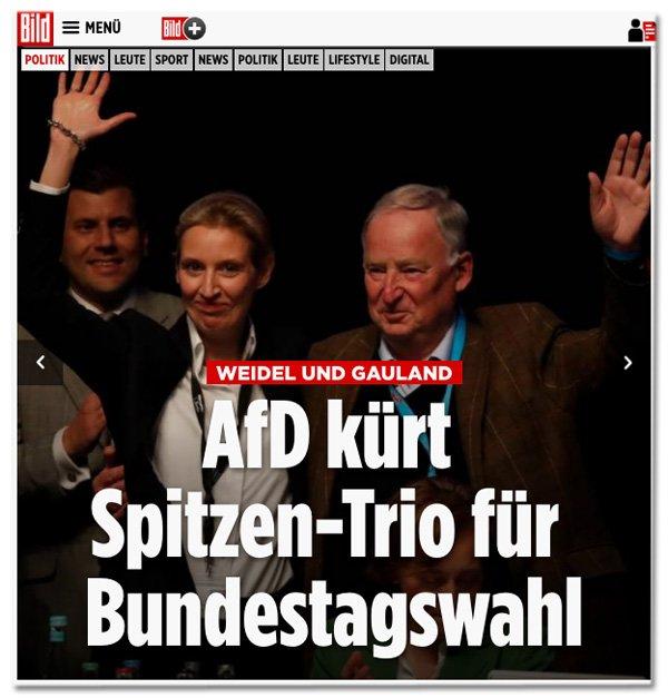 Hier sehen Sie das neue AfD-'Spitzen-Trio', bestehend aus zwei Personen. #AchBILD #afdpt17