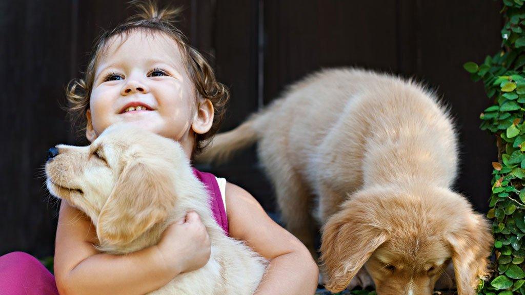 Cães deixam crianças mais resistentes e reduzem risco de obesidade https://t.co/5HZhbMTQGa
