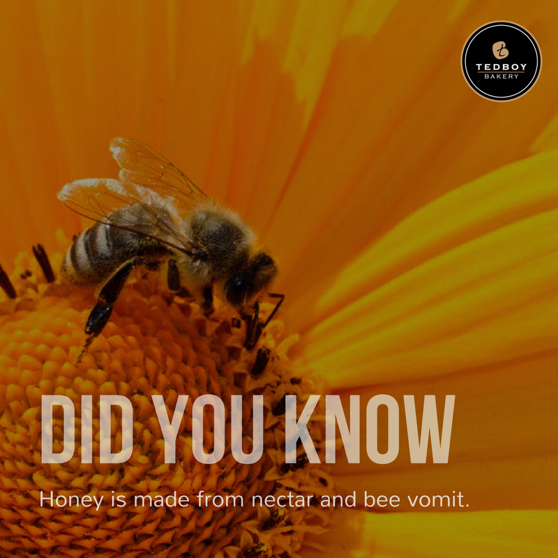 Oh wow, this is news to us too, and we still love honey with our waffles and pancakes! #DidYouKnow #FunFact https://t.co/aAwQxbndGL