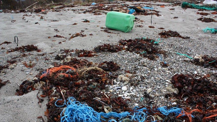 #SaveOurOcean