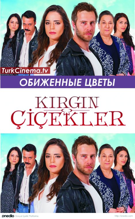 bigcinema-tv-serial