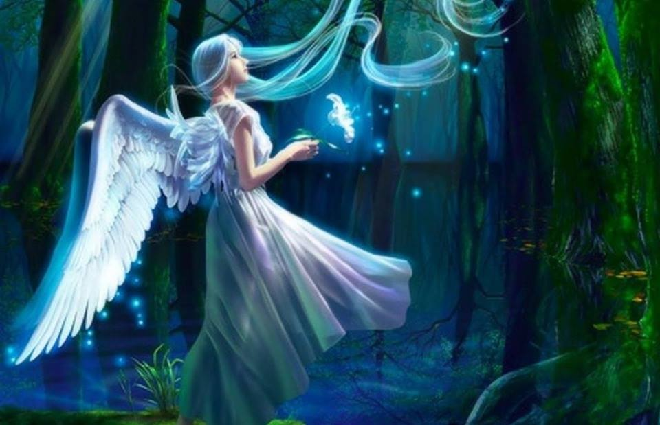 test Twitter Media - Is she a fairy or an angel? #fairies #angels #magical #enchantedforest #EllenRothAuthor https://t.co/mp9k63uocV