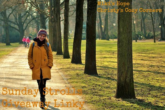 Sunday Stroll Giveaway Linky 4/23/2017