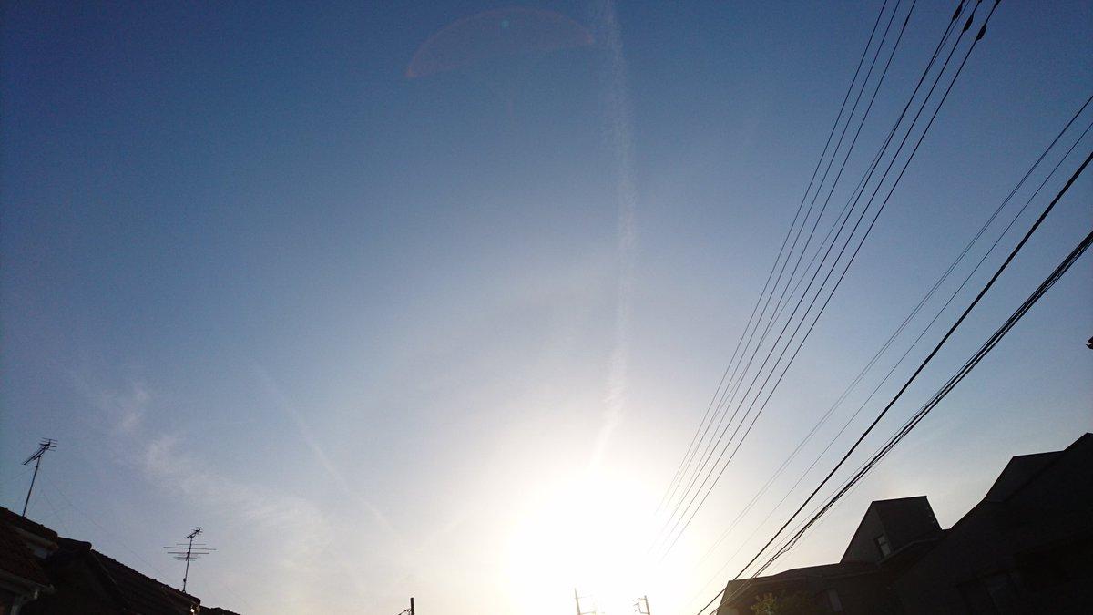 ほら、青空だよ!!舞い降りてきたふみやです(笑)#天空の城ラピュタ ??(笑)シータは??