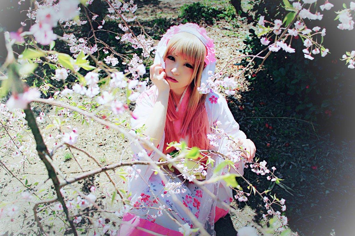 月曜日のお写真〜(●´ω`●)衣装はちょっと創作入ってるんだけど桜柄の浴衣を変形させてつくりました!鬼徹キャラもっとやり