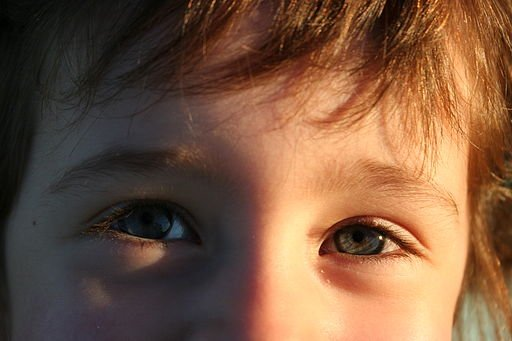 I can see me in your eyes. Can you see you in my eyes? –A seven-year-old's wisdom https://t.co/PvgBKNyiDH