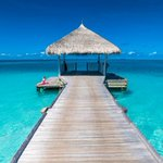 Maldives hit by ISIS fears as blogger who slammed extremists is hacked to death on the Brit honeymoon hotspot