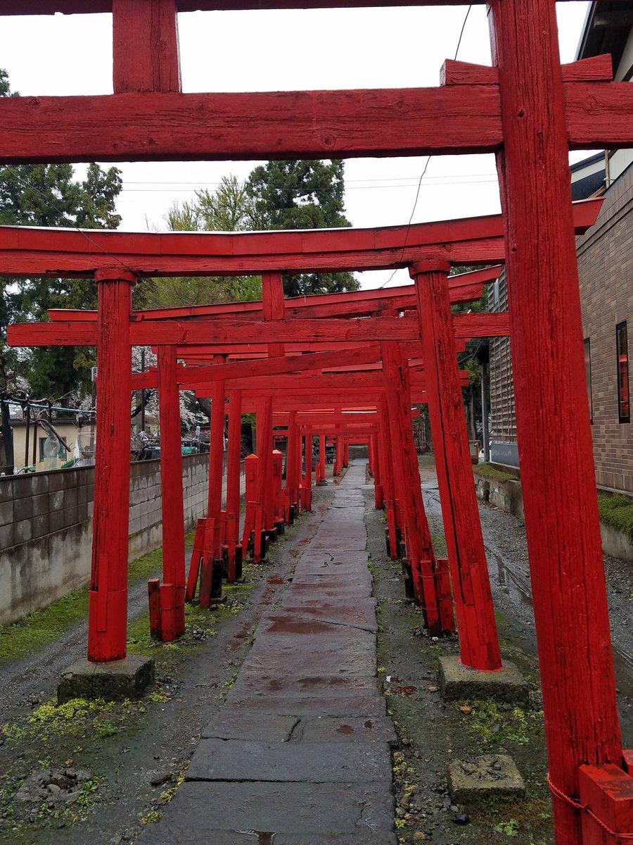 別マガ2017年2月号表紙・付録クリアファイルに描かれている鳥居のある、新寺町稲荷神社 #ふらいんぐうぃっち