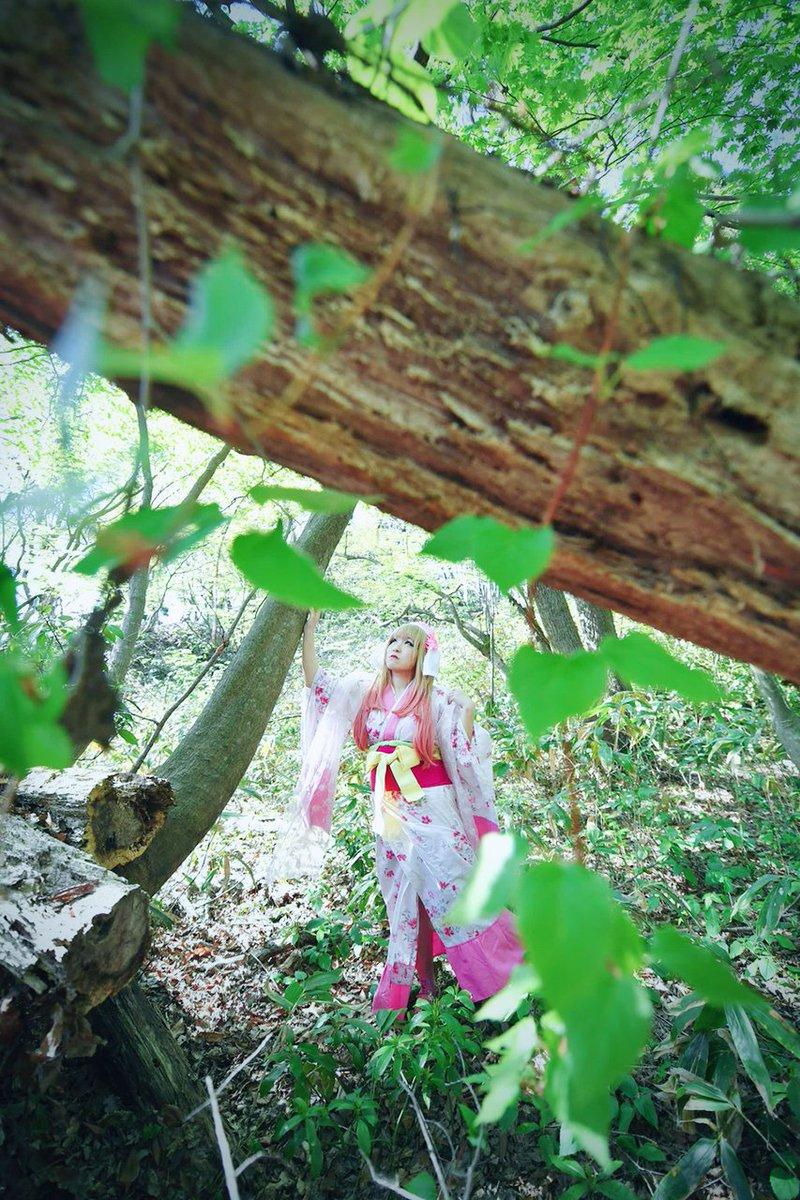 いただいたお写真を加工しました〜森の中風の写真(*^^*)足元悪い中撮影していただいたかいがありました!実は見えない足元