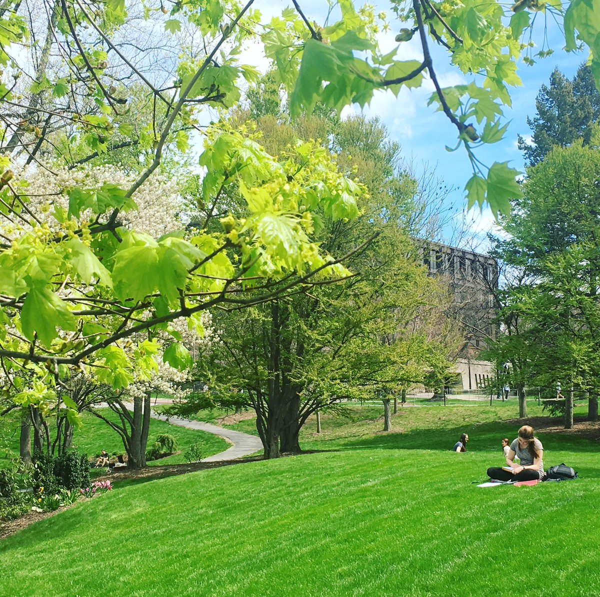 Blue skies & sunshine 🌞 #Cornell https://t.co/KGhUydhRtb