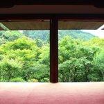 京騒戯画が5本の指に入るぐらい好きで、聖地巡礼にと行った高山寺が人生で一番好きな寺(?)に