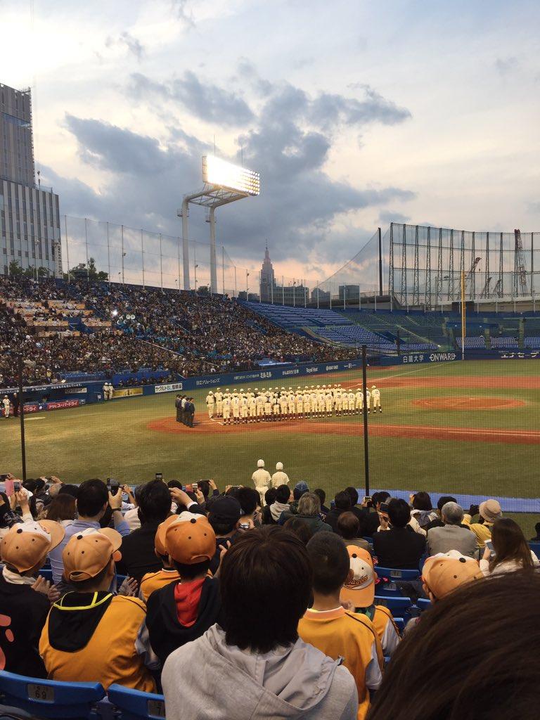 ダイヤのAの寺嶋先生のツイートを見て急遽神宮へ、早稲田応援席で応援してます⚾️完璧なオフになりました(笑)