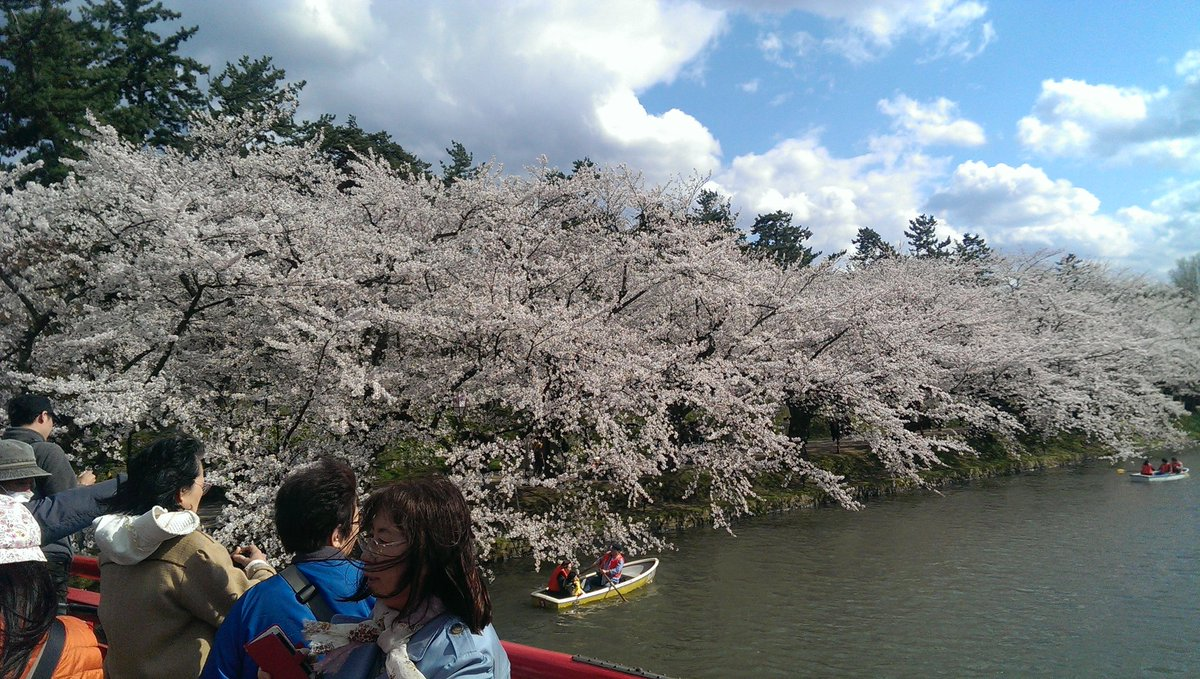 弘前からやっと帰還。花見に行ったのか、ふらいんぐうぃっちを探しに行ったのか、よくわからん(笑)#ふらいんぐうぃっち #花