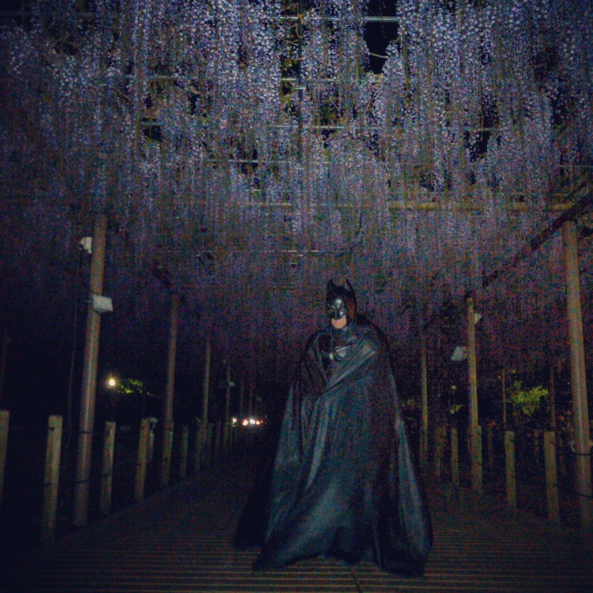 バットマンが江南市の曼陀羅寺の藤棚に現れた‼誰が写真撮ってるの?写真お借りします。#バットマン#ジャスティスリーグ#アベ