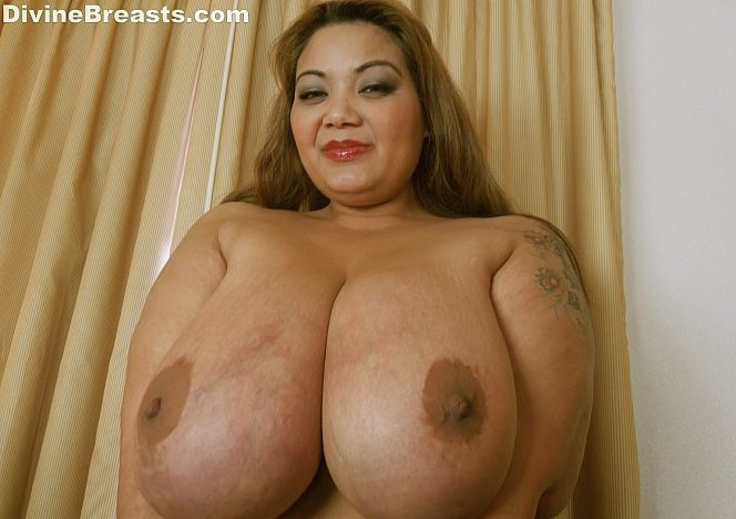 Miss Ling Ling #bigbreasts Asian see more at https://t.co/LBOTX5AYUJ https://t.co/ytpMHDK2Nj