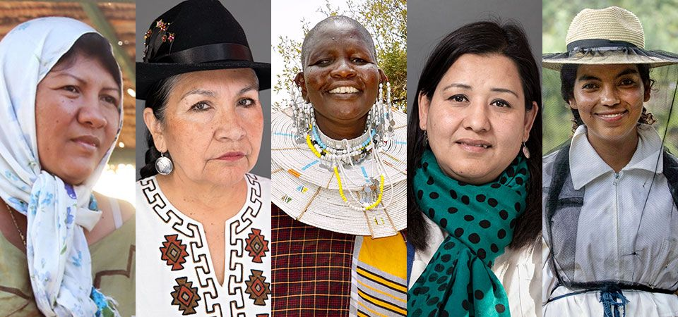 test Twitter Media - From @UN_Women: Indigenous women's rights and activism https://t.co/NVN2mcCHJv https://t.co/EQWodVRp0J