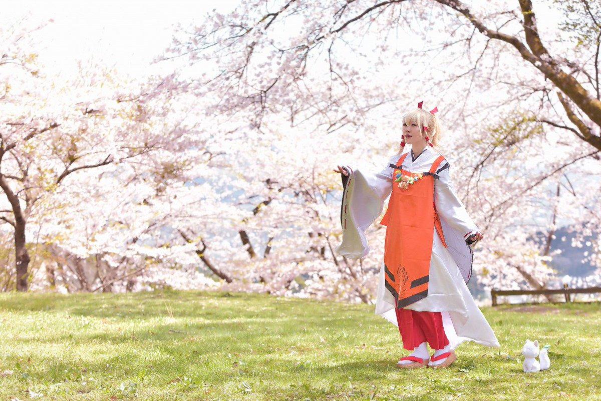 【コスプレ】いなり、こんこん、恋いろは。宇迦之御魂神桜とうか様🌸P:きいろいとり桜の時期は雨が多いですが、この日はお天気