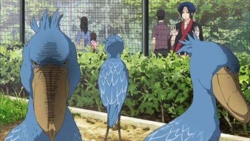 志村どうぶつ園でさーハシビロコウ特集してたらしくさ。DAIGOが「アニメとかに出てきそう」て発言でけものフレンなんちゃら