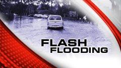 Heavy rains bring flash floods, flood warnings toIllinois
