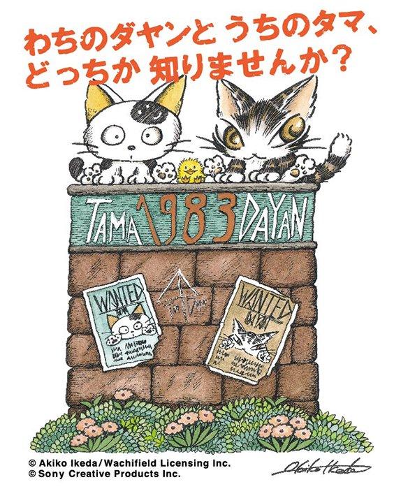 5月3日(水・祝)より、日本橋三越本館5階 スペース#5 「ねこのダヤン初夏コレクション」内にて、うちのタマ知りませんか