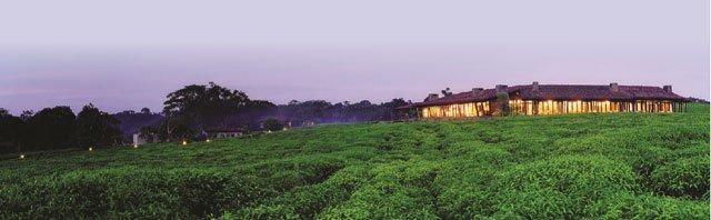 Luxury resort opens two safari lodges in Rwanda