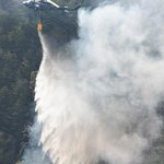 Wildfire hits highly radioactive mountain forest in Fukushima