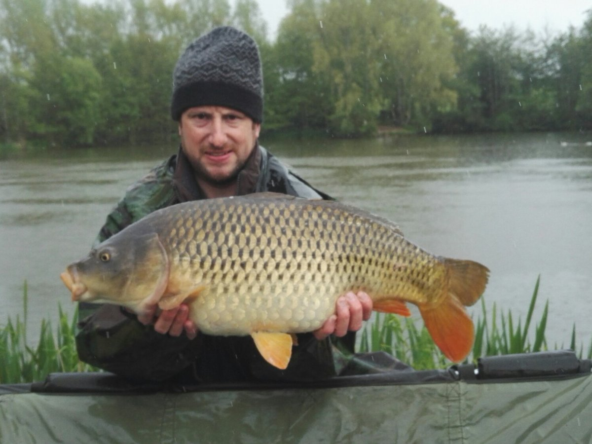 A nice <b>Common Carp</b> this afternoon #Carp #CarpFishing @DynamiteBaits #TheSource https://t.co/x