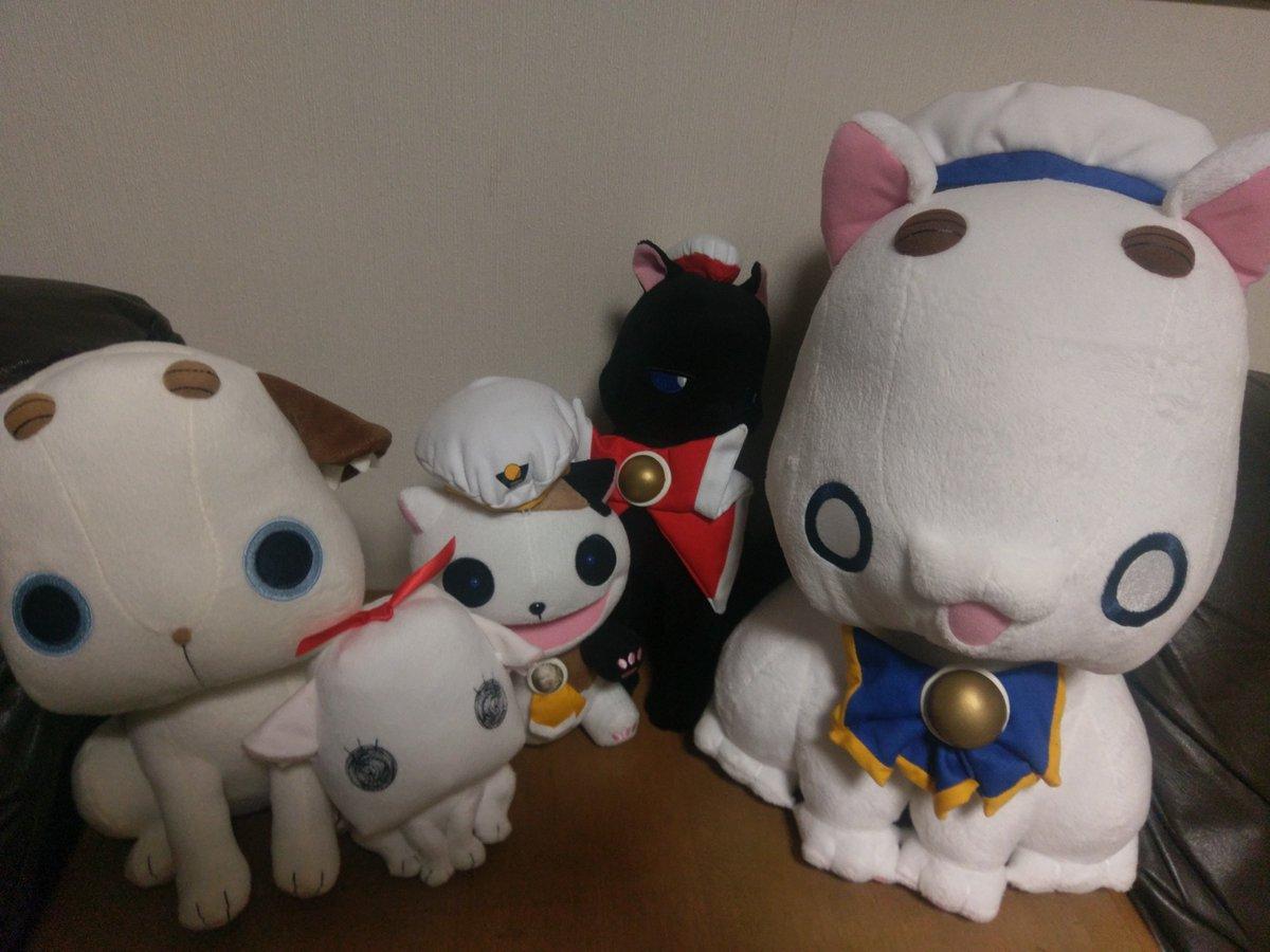 天野こずえ先生猫戦隊的な何かが誕生しました。#あまんちゅ!#ARIA#ARIAカンパニー