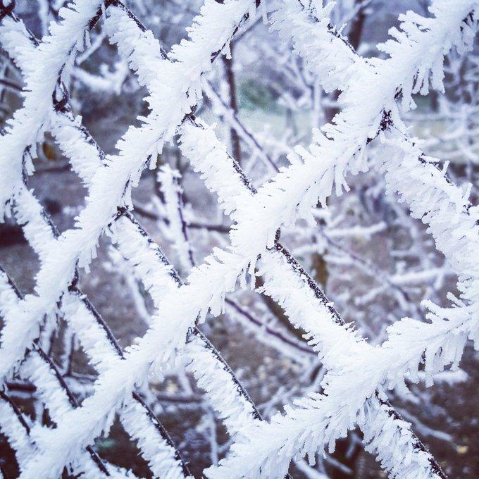 Frozen! https://t.co/oVRS4WqImd