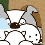 アニメ タマ&フレンズ~うちのタマ知りませんか?~ 今日のお話は「フレンズ会議」ブル相手に度胸試しだって。大丈夫…? 7