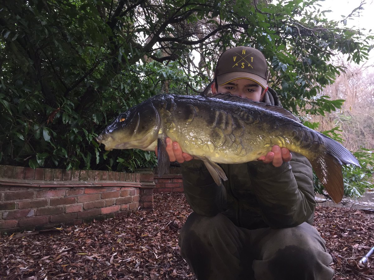 Lovely mirror 🎣 #mirrorcarp #carpfishing #fishing #carpfishing #<b>Catchandrelease</b> #CARPology