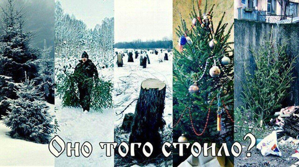 За новый год вырубается елок