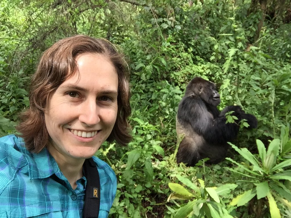 Update. #gorillatrekking #Rwanda #donttrythisathome https://t.co/WIsOrhv5ry