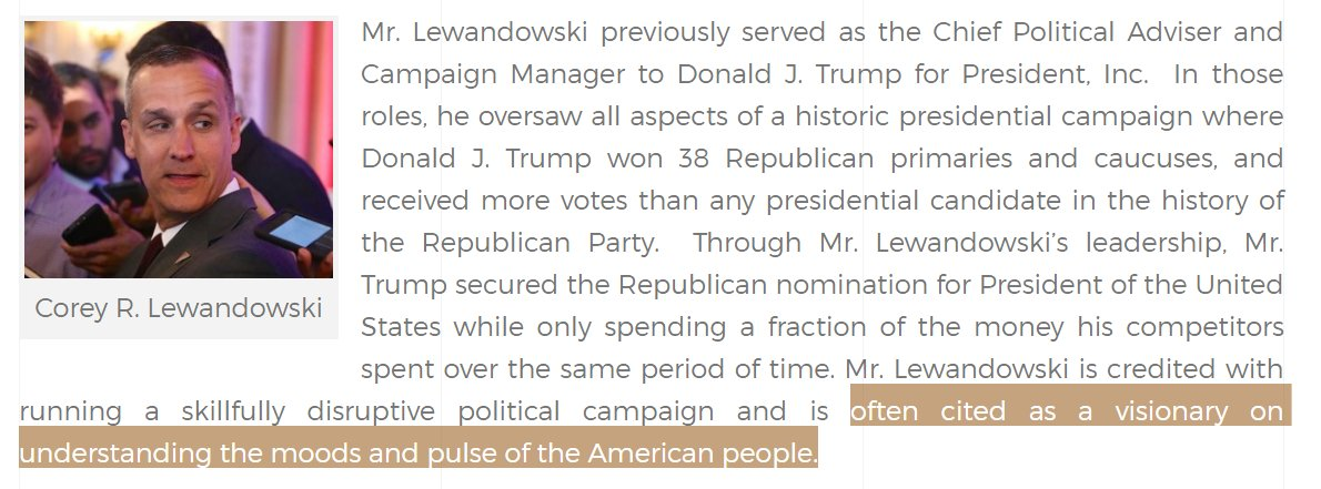 This is great stuff from website of @CLewandowski_'s new lobbying firm. https://t.co/ttJgw99gsg https://t.co/Y0otcxpybi