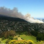 Strong winds fan huge scrub fire in north Dunedin