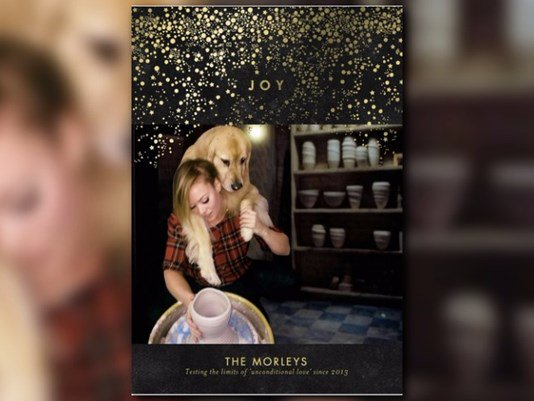 A Denver dog mom's epic Christmas card just won the holidays