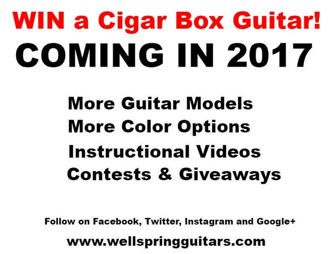 Wellspring Cigar Box Guitars